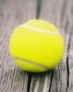 conseil paris tennis